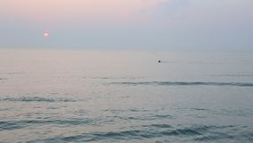 Zonsopgang bij het strand stock video