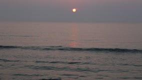 Zonsopgang bij het strand stock videobeelden