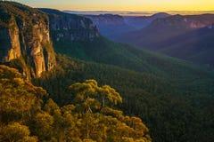 Zonsopgang bij het vooruitzicht van de govettssprong, blauwe bergen, Australië 68 stock afbeeldingen
