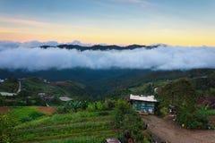Zonsopgang bij hooglanden in Borneo, Sabah, Maleisië stock foto's