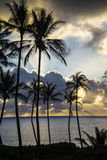 Zonsopgang bij Makapu'u-Strand, Oahu, Hawaï Stock Foto