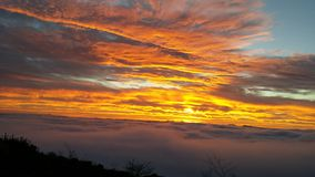 Zonsopgang boven de Mist Royalty-vrije Stock Foto