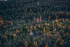 Zonsopgang in de bergen stock afbeeldingen