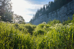 Zonsopgang in de bergen, mooi landschap Stock Afbeelding