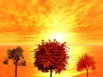 Zonsopgang. De bomen van de herfst Stock Foto's