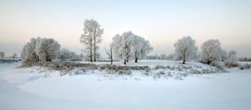 Zonsopgang in de winter Stock Foto's