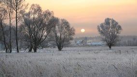 Zonsopgang in de winter Stock Foto