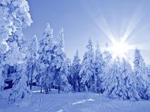 Zonsopgang in de winterdag Royalty-vrije Stock Afbeelding
