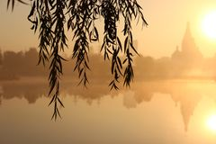 Zonsopgang dichtbij kerk en meer Mist over het water een blik door de wilgentakken bij dageraad royalty-vrije stock foto