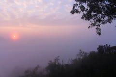 zonsopgang door het overzees van mist stock foto's