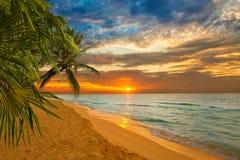 Zonsopgang in een Caraïbisch strand stock foto
