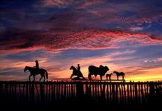 Zonsopgang en de boerderijpoort van Texas Royalty-vrije Stock Foto's