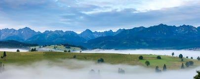 Zonsopgang en de zomer het nevelige panorama van het bergland stock fotografie