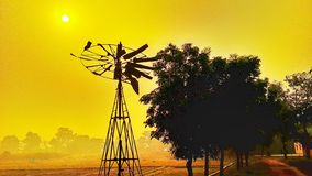 Zonsopgang en een landbouwgrond voor padie royalty-vrije stock foto