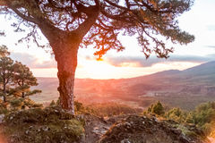Zonsopgang in La Palma, Canarische Eilanden Stock Foto's