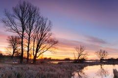 Zonsopgang met kleurrijke wolken over een wilde vijver die door bomen in de herfstochtend wordt omringd royalty-vrije stock afbeelding