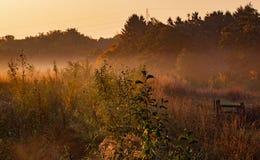Zonsopgang met mist en mist over het gebied stock foto's