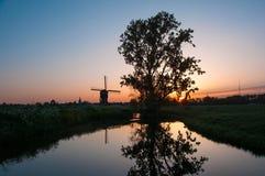 Zonsopgang met oude boom en Nederlandse die windmolen in het water wordt weerspiegeld Stock Foto