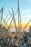 Zonsopgang onder het landschap van de de winter kalme berg met mooi Royalty-vrije Stock Afbeeldingen