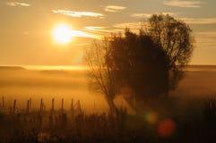 Zonsopgang in Oost-Vlaanderen stock foto