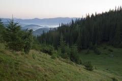 Zonsopgang op de berg Stock Foto