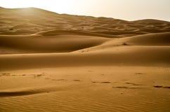 Zonsopgang op de zandduinen van de Sahara stock afbeeldingen