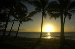 Zonsopgang op een tropisch strand Stock Afbeeldingen