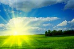 Zonsopgang op een weide met mooie bewolkte blauwe hemel stock fotografie