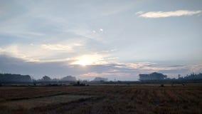 Zonsopgang op het gebied met blauwe hemel stock afbeeldingen
