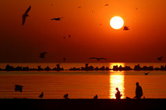 Zonsopgang op het strand Royalty-vrije Stock Afbeeldingen
