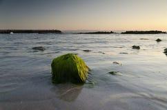 Zonsopgang op het strand in Pomorie-toevlucht Stock Fotografie