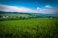 Zonsopgang op heuvels van Beaujolais, de Rhône, Frankrijk Stock Fotografie