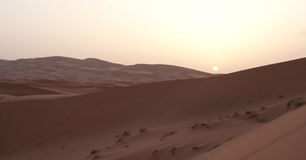 Zonsopgang op zandwoestijn Stock Foto's