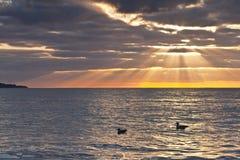 Zonsopgang op zee stock afbeeldingen