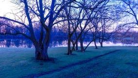 Zonsopgang in Openbaar Park in de Herfst stock afbeeldingen
