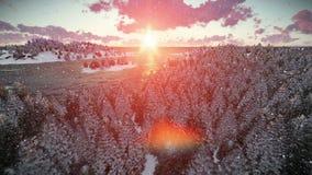 Zonsopgang over bosheuvels en overzees, het sneeuwen stock videobeelden