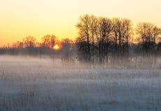 Zonsopgang over de de wintervlakte royalty-vrije stock afbeelding
