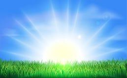 Zonsopgang over groen gebied van gras Stock Afbeelding