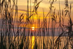 Zonsopgang over het Balaton-meer, Hungaru Stock Foto's