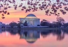 Zonsopgang over Jefferson Memorial Washington gelijkstroom stock fotografie