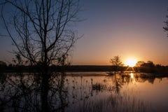Zonsopgang over meer in de lente, landschap in schemerdonker, bezinning royalty-vrije stock fotografie