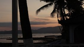 Zonsopgang over tropische eilandstrand en palmen, het eiland van Bali stock video