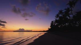 Zonsopgang over tropische eilandstrand en palmen Tropisch strand met palm stock videobeelden