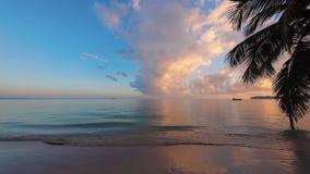 Zonsopgang over tropische strand en palm Ochtend op exotisch Caraïbisch eiland stock footage