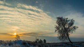 Zonsopgang in platteland in de winter Royalty-vrije Stock Foto's
