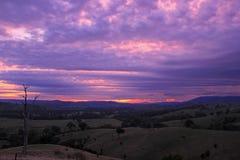 Zonsopgang 2 plattelandslandschap Victoria van de Acheronvallei stock afbeeldingen