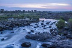 Zonsopgang in Sabie-rivier in het Nationale park van Kruger, Zuid-Afrika Stock Fotografie