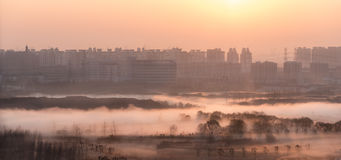 Zonsopgang in Shanghai, China royalty-vrije stock foto's