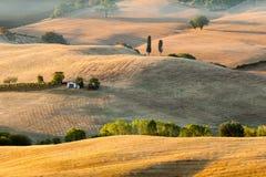 Zonsopgang in Toscaans platteland dichtbij Pienza, Italië Stock Foto's