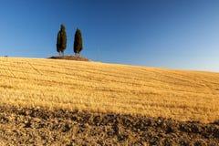 Zonsopgang in Toscaans platteland, Italië Stock Afbeeldingen